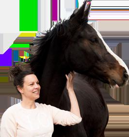 Paardenfluisteren